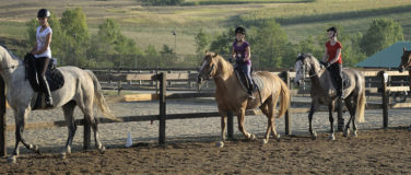 Horse riding camps for children