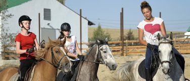 Riding lessons for adults and children